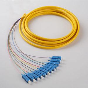 12 cores SC UPC Bundle Fan Out Patch Cord