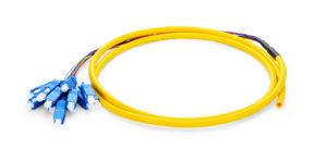 12 Fiber Single-mode Bunch Fiber Optic Pigtail with SC FC LC ST Connectors