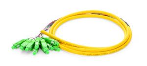 12 Fiber Single-mode Bunch Fiber Optic Pigtail with SC/APC Connectors